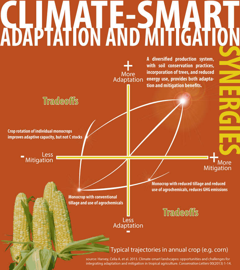 Climate-Smart_Synergies-Graphic - EcoAgriculture_Nov14_2013