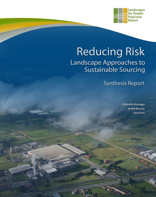 Reducing Risk Synthesis Report cover
