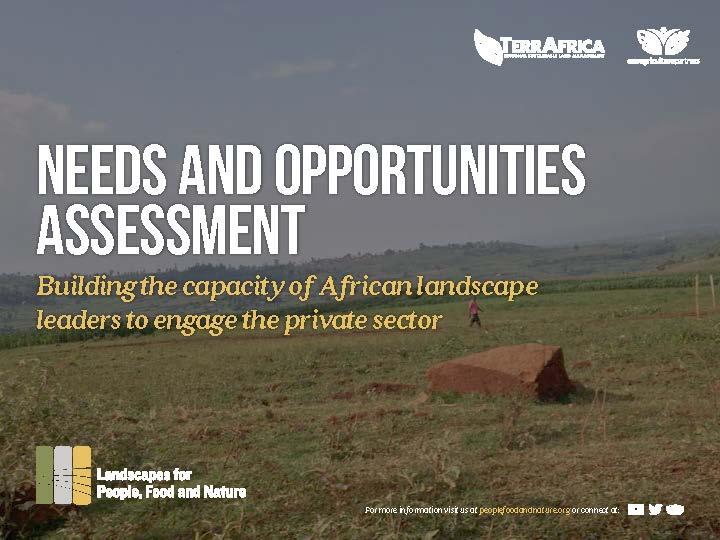 African Business Engagement - Needs and Opportunities Assessment - Web Cover_Page_01
