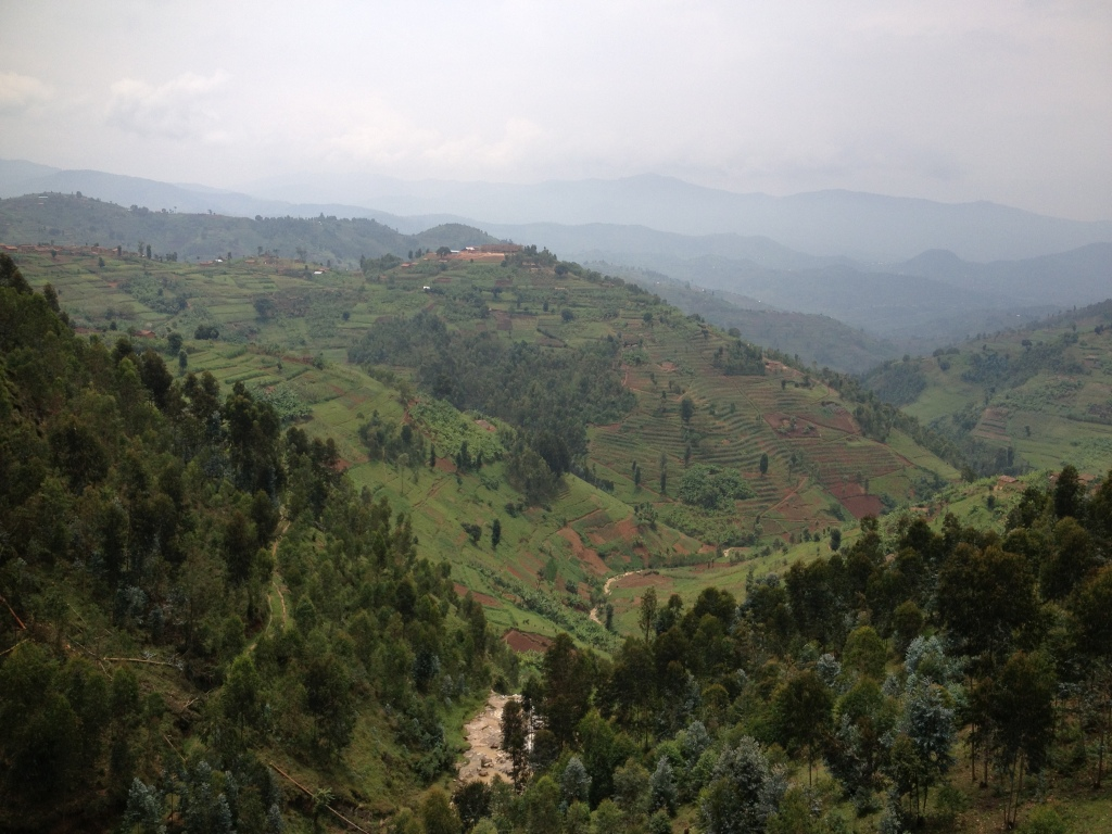 Rwandan forest and agricultural terraces. Photo by Raffaela Kozar, EcoAgriculture Partners.