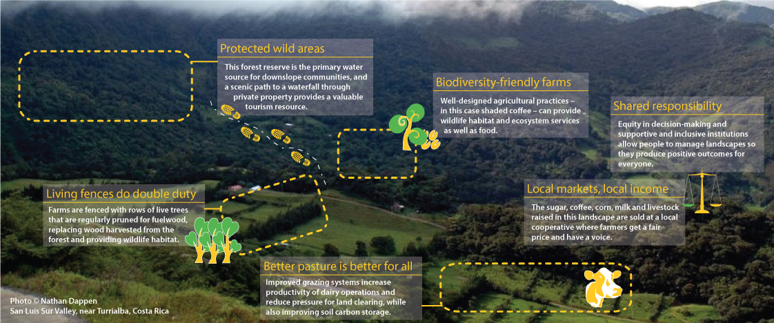 This diagram roughly outlines some of the key issues at play in landscapes, and some of the approaches used in integrated landscape management.