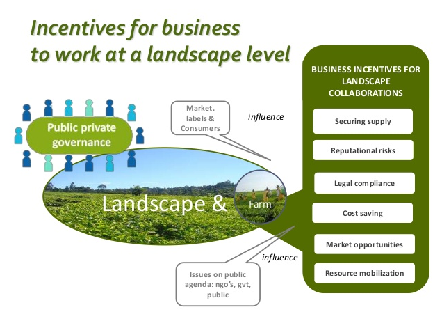 Incentives for business to work at a landscape level