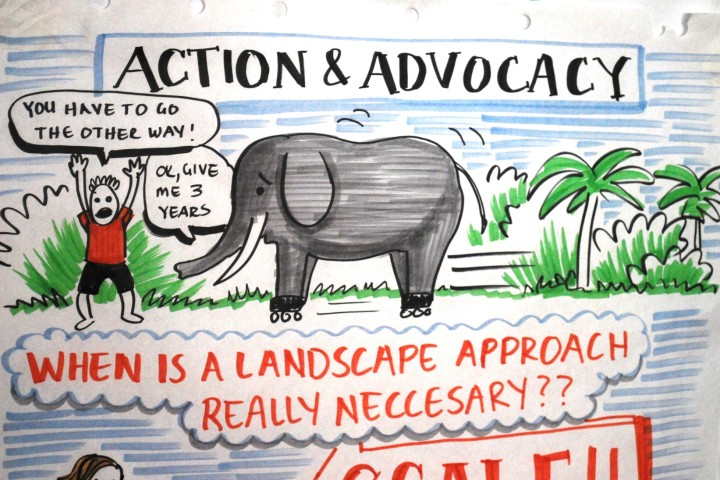 Action and Advocacy