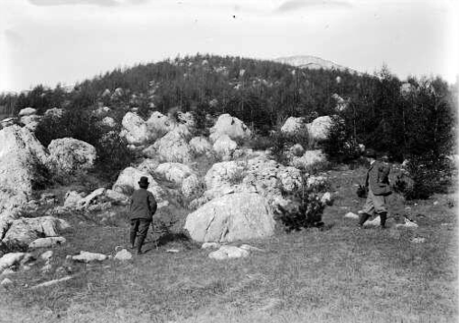 The French government sponsored a program to re-green the Alps by recruiting members of all classes of society to plant trees. This photograph depicts two men planting larch trees in the mountains in  the mountain of Céüse, France in 1903. Photo sourced from the Departmental Archives of High Alps.